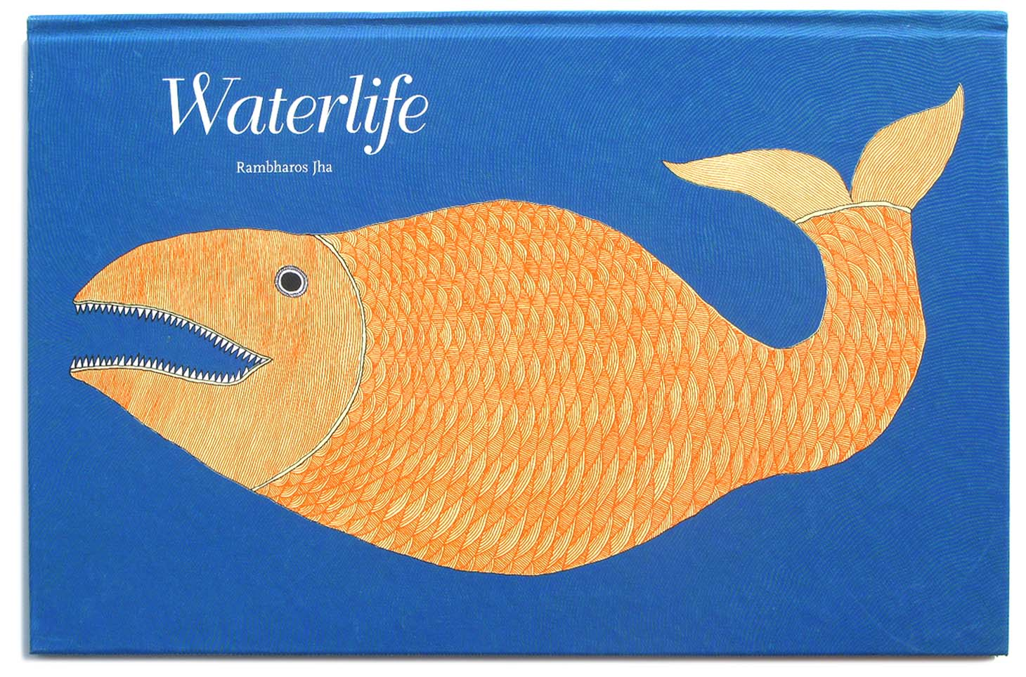 Waterlife-LR-
